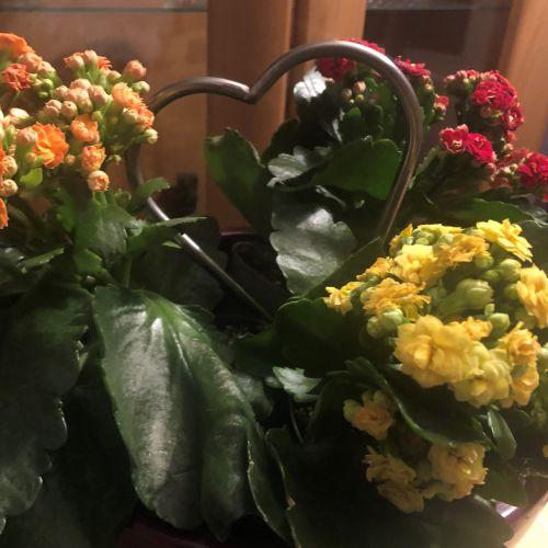 Edelstahlherz zwischen Blumen